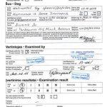 Международный сертификат на Пателлу папильона Гармонии из Дома Смирновых