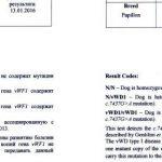Сертификат папильон, Фон Виллибранд тип1
