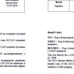 Сертификат гипорикозурия