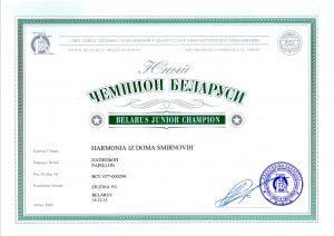 Папильон гармония юный чемпион беларуси